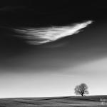 Fotobeitrag von Andreas Lange